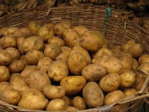 Dampfgarer – Wie lange brauchen Kartoffeln