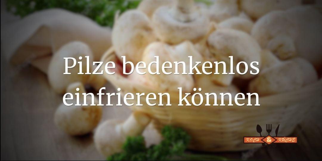ᐅ Pilze einfrieren – Das ganze Jahr über leckere Pilze